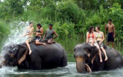 शुक्लाफाँटा र खप्तड घुम्न आउने पर्यटको सङ्ख्यामा वृद्धि