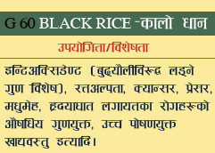 G 60 BLACK RICE