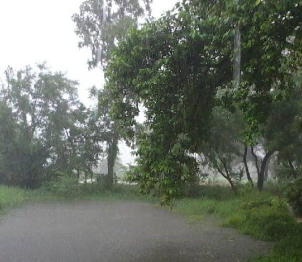 कुनुकुन क्षेत्रमा हुन्छ ३ दिनसम्म भारी वर्षा ? यस्तो छ पुर्वानुमान