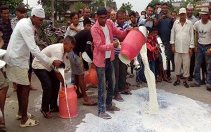 सडकमा दूध पोखेर आन्दोलन
