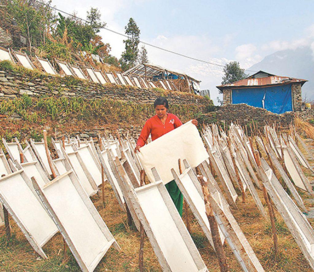 अरुणखोलामा ५० करोडको लगानीमा कागज कारखाना सञ्चालन